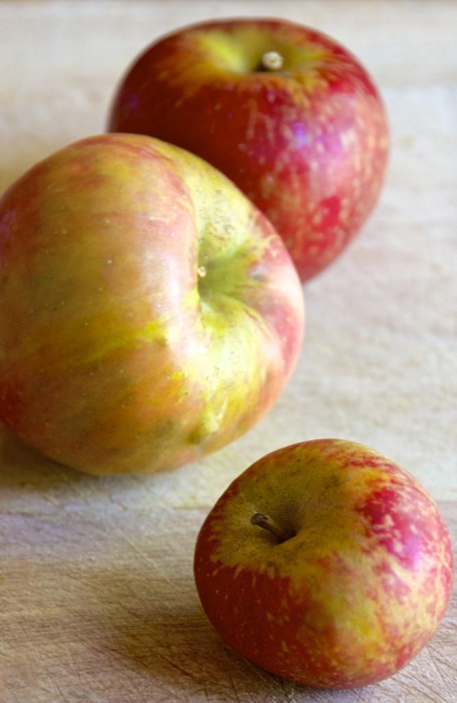 "<img alt=""Honeycrisp Apples""/>"