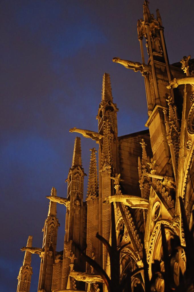 "<img alt=""Notre Dame Gargoyles at Night""/>"