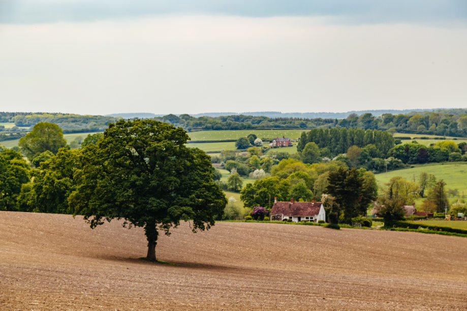 "<alt img=""Wiltshire Countryside ""/>"