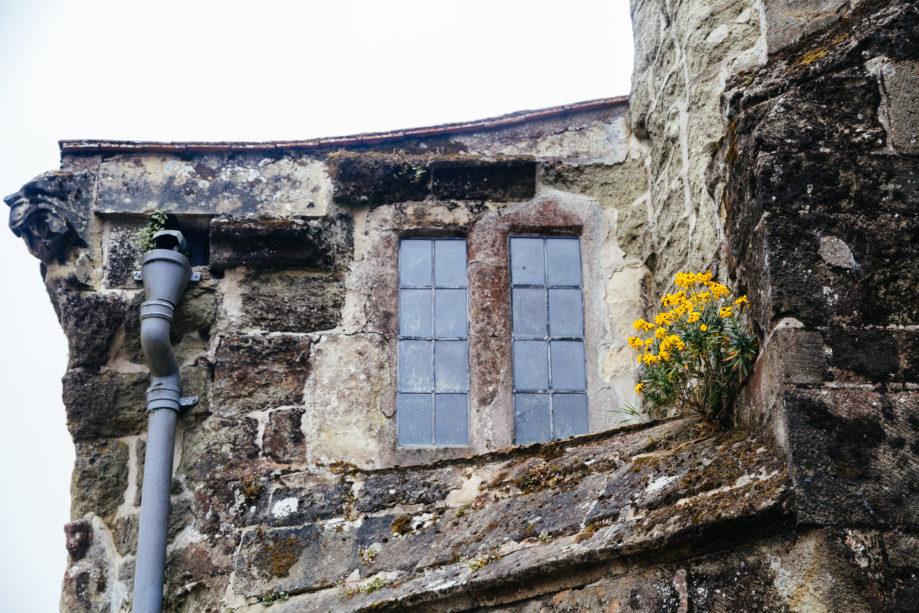 "<alt img=""Shaftesbury Window""/>"