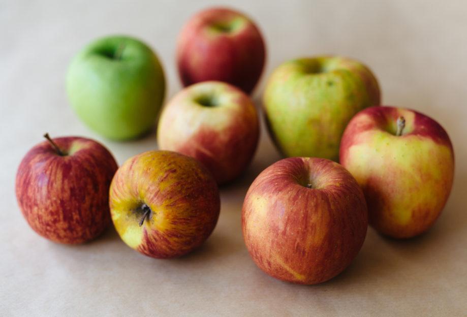 "<alt img=""Fall Apples""/>"