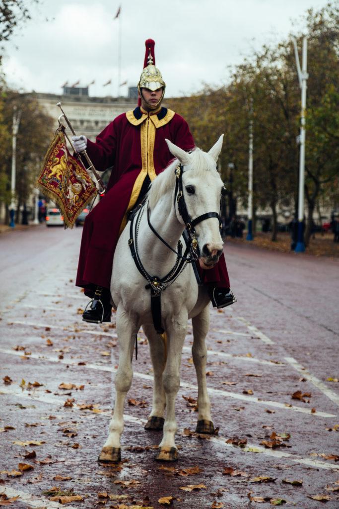 "<alt img=""Queen's Horse Guard""/>"